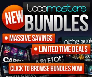 300 x 250 lm bundles promo