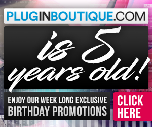 300 x 250 pib 5th birthday pluginboutique