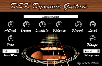 DSK Dynamic Guitars