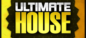 Lm ultimate house 1000 x 1000