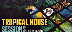 Niche tropical house 1000 x 512