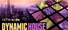 Nichedynamichouse1000x512 pluginboutique