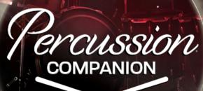 Percusion companion pluginboutique