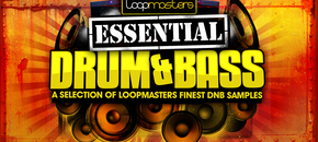 Loopmasters essential drum   bass banner 1000 x 512 pluginboutique