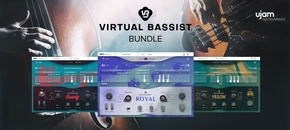 Vb bundle pib