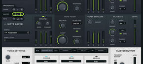 Loopmasters khords interface pluginboutique